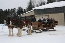 sleigh-ready